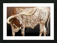 Longhorn Steer Profile 7x5 Picture Frame print
