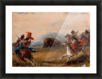 Wounded Buffalo Picture Frame print