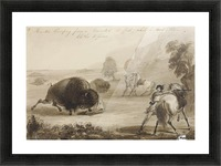 Hunters Escaping from a Wounded Buffalo, While He Tears Their Clothes to Pieces Picture Frame print