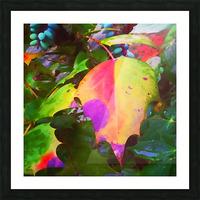 Color Burst Picture Frame print