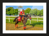 Racehorse01 Picture Frame print