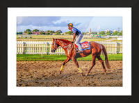 Racehorse05 Picture Frame print