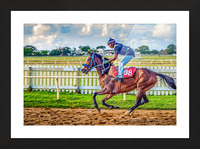 Racehorse09 Picture Frame print