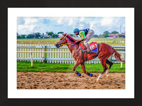 Racehorse10 Picture Frame print