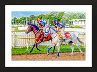 Racehorse08 Picture Frame print