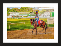 Racehorse03 Picture Frame print
