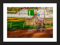 Racehorse02 Picture Frame print