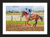 Racehorse06 Picture Frame print