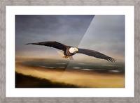Raptor Skies Picture Frame print