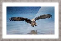 Inbound Picture Frame print
