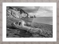 La Presqu'ile in black and white Picture Frame print