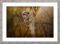 I See You Picture Frame print