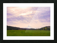 Mount Hood Bathed in Golden Rays at Sunset Picture Frame print