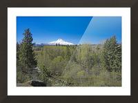 Mount Hood   Oregon Picture Frame print