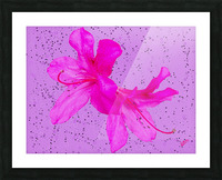 Think Pink Picture Frame print