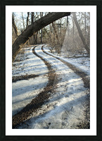Snowy Trails Picture Frame print