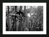 Desert in Black White Picture Frame print