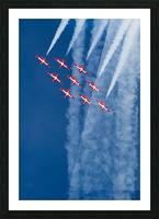 Snow Birds in Flight Picture Frame print