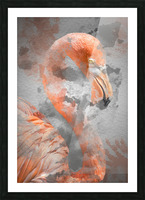 Flamant  Picture Frame print