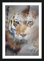Tigre Picture Frame print