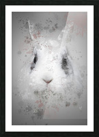 Lapin Picture Frame print