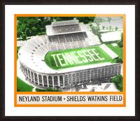 1964 Tennessee Vols Football Ticket Stub Remix Picture Frame print