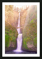 Multnomah Falls Bathed in Sunlight   Columbia River Gorge National Scenic Area   Oregon Pacific Northwest Picture Frame print
