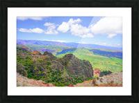 Waimea Canyon Area in the Puu Ka Pele Forest Reserve on the Island of Kauai Hawaii Picture Frame print