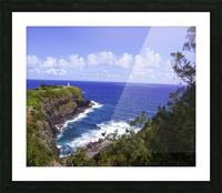 Spring at Kilauea Lighthouse on the Island of Kauai Picture Frame print