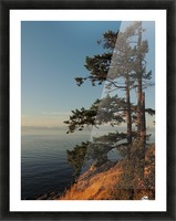 Standing Tall Picture Frame print