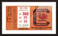 1975 South Carolina Gamecocks vs. Georgia Tech Picture Frame print