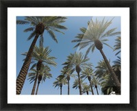 Date Garden Oasis Picture Frame print