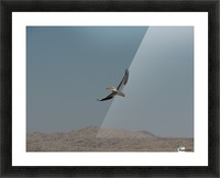 Soaring High Picture Frame print