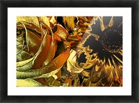 Just Golden Picture Frame print