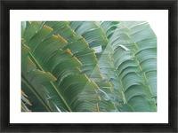 landscape_2_0093 Impression et Cadre photo