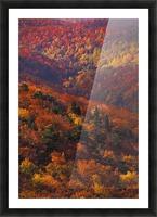 landscape_2_0441 Picture Frame print