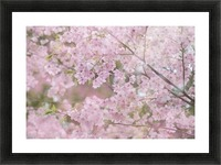 landscape_2_0947 Picture Frame print