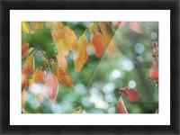 landscape_2_1026 Picture Frame print