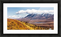 Scenic view of peak fall colors along Matanuska Valley, Southcentral Alaska Picture Frame print