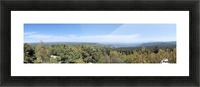 From the Forest Picture Frame print
