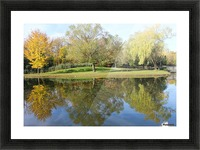 Tree reflection Picture Frame print