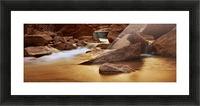 Zion Park River Picture Frame print