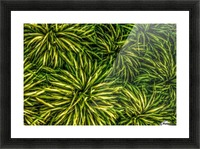 Green Chaos Picture Frame print