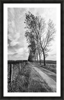 Tree Line Picture Frame print