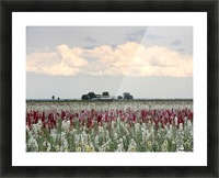 A Perfect Day Picture Frame print