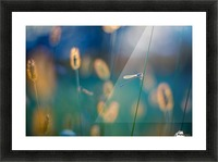 Autumn meadow Picture Frame print