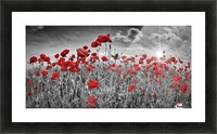 Idyllic Field of Poppies with Sun Picture Frame print