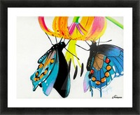 Butterflies and Lily Picture Frame print
