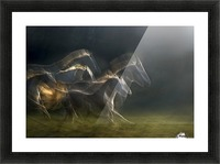 echoing in motion Picture Frame print
