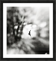 Equinox Picture Frame print